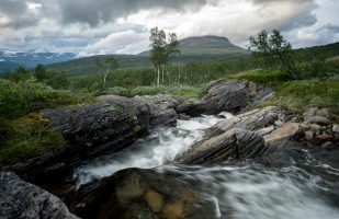 Small stream in Tverrådalen