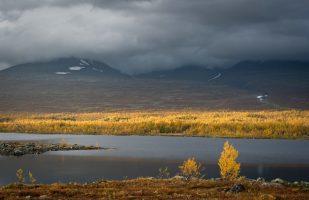 Autumn colors at Boarekjávrre