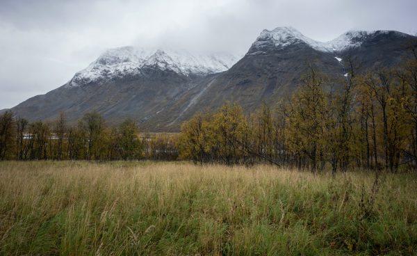 Mountain view in Rapadalen