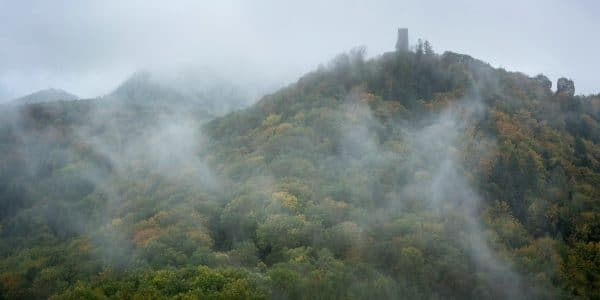 Colorful forest with castle ruin Scharfenberg