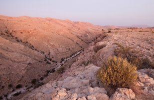 Salmah Plateau