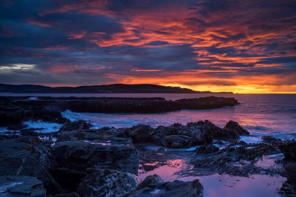 Curio Bay sunrise