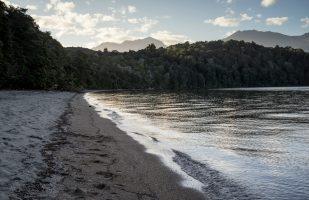 Beach at Brood Bay