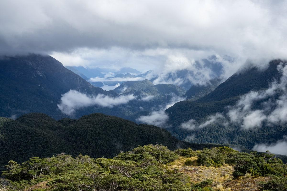View towards Dusky Sound