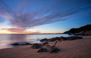 Abel Tasman - Mutton Cove